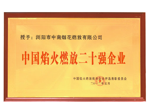2012 China fireworks display 20 strong enterprises